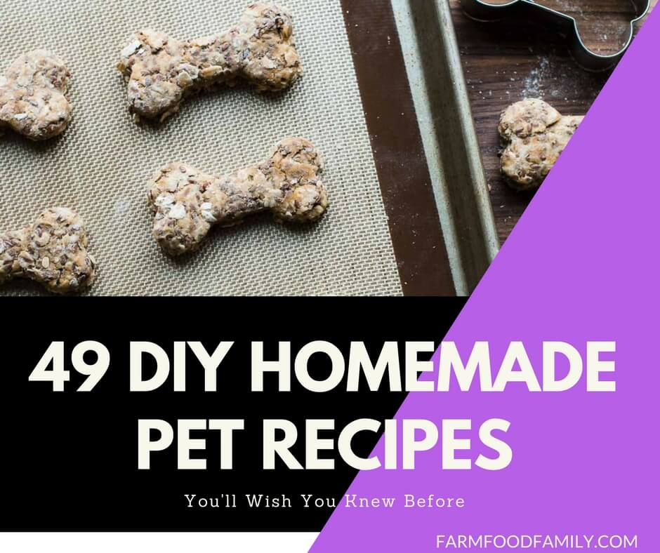 49 DIY Homemade Pet Recipes For Your Dogs And Cats