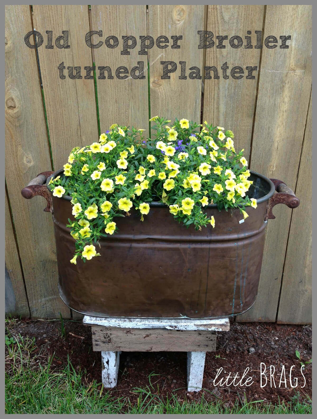 Vintage Boiler with Blooming Petunias