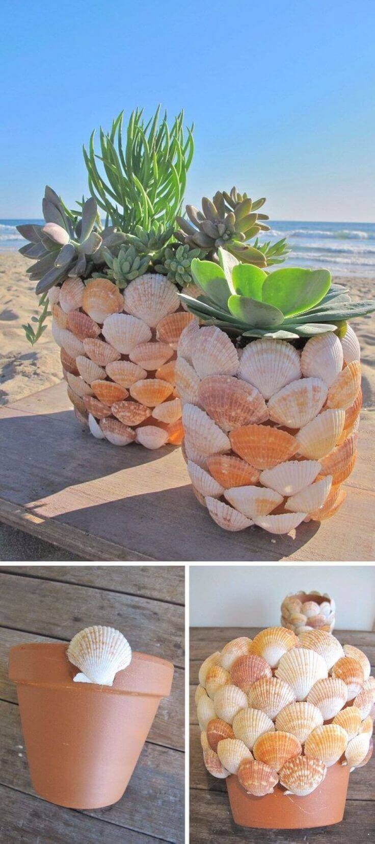 Shell Covered Seaside Plant Displays