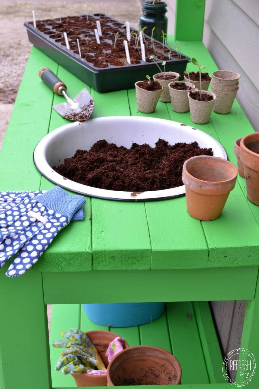 How to Pot Your Own Seedlings