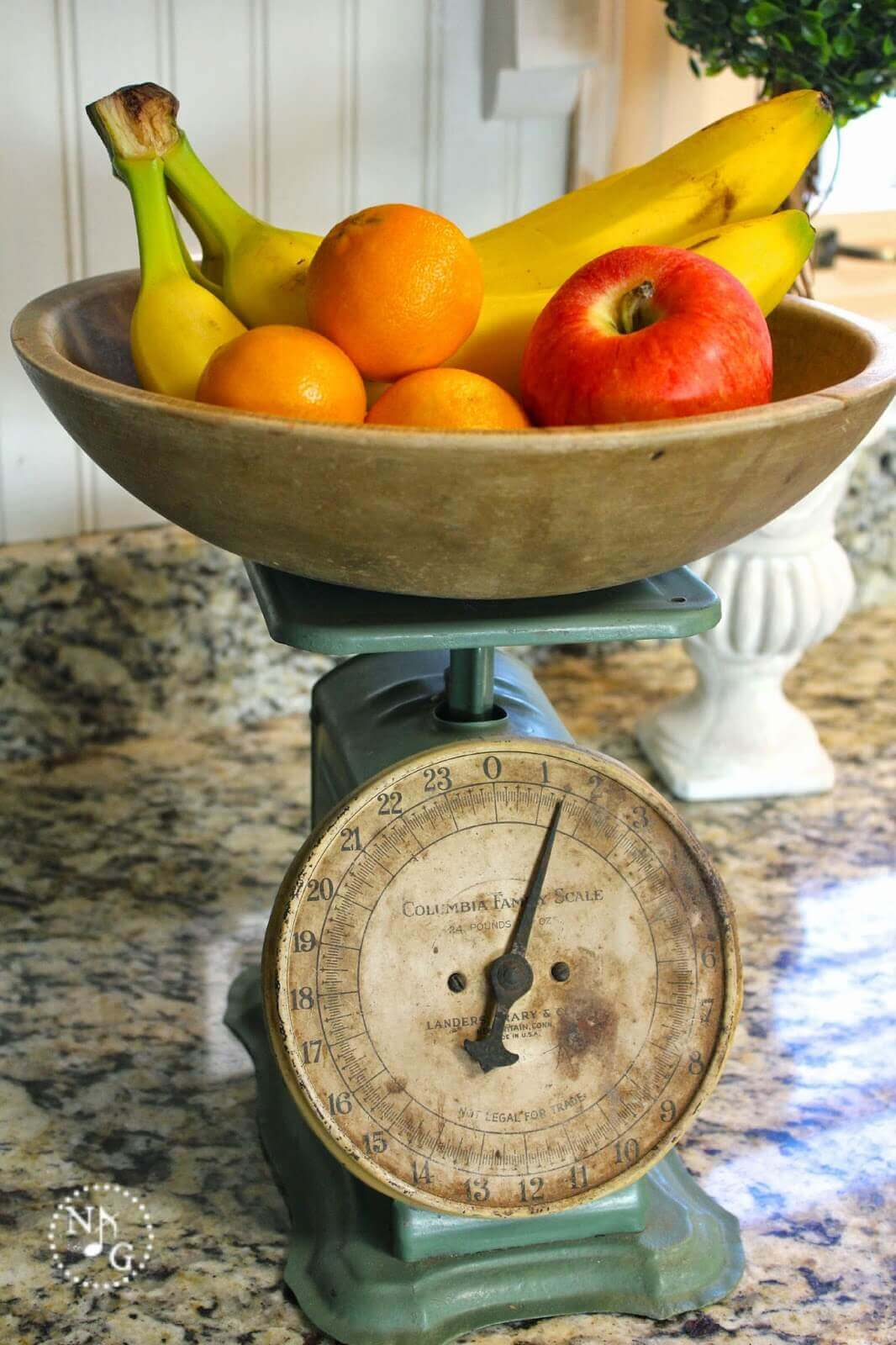 Functional Food Scale Fruit Bowl