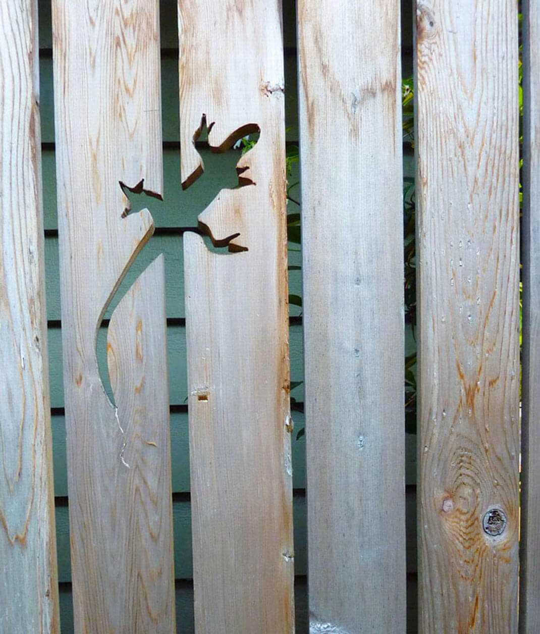 Adorable Lizard Cut into the Fence
