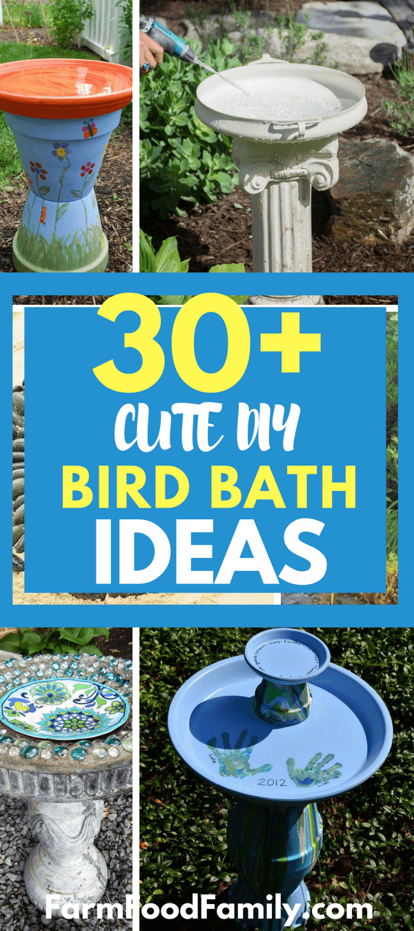 A quirky idea for a bird bath is to put an old bathroom sink in your garden. This makes a roomy bath that the birds will love. The easiest bird bath comes when you place trash can lids on stacks of stones.