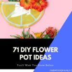 71 Adorable DIY Flower Pot Ideas for Gardeners