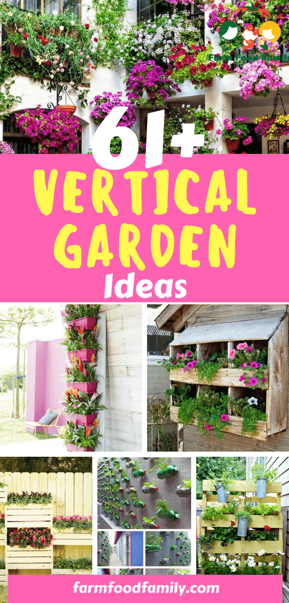 Looking for a vertical garden idea? Here are 61+ best intriguing ideas thatwill act as your guide and inspiration as you beautify your home landscaping.