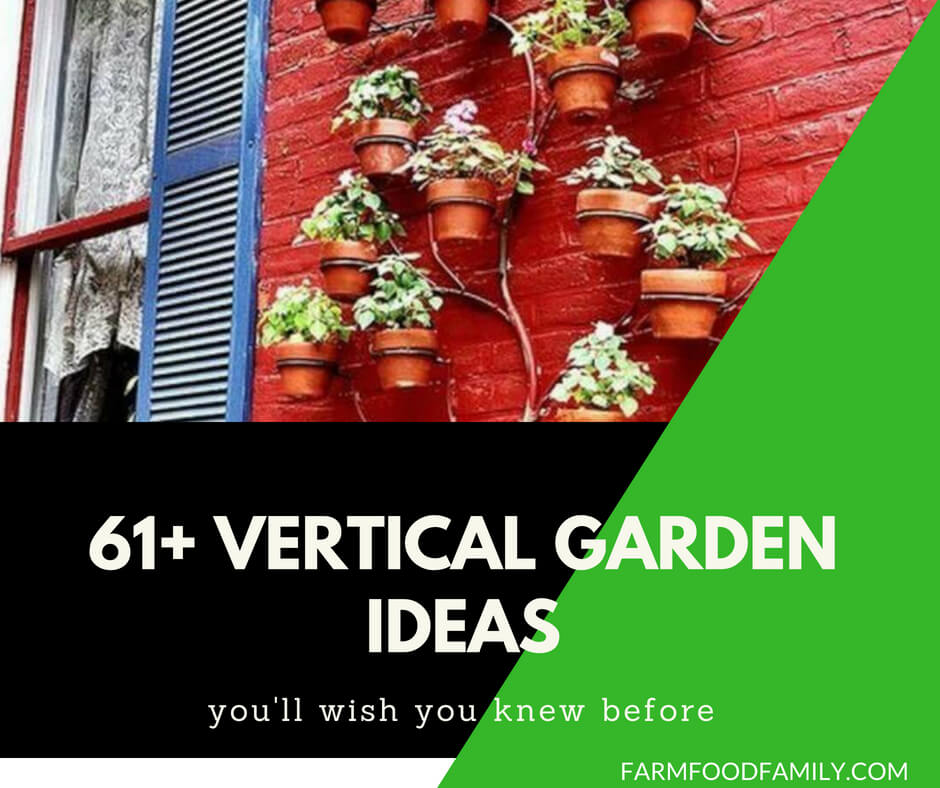 61+ Best Vertical Garden Ideas That Will Change the Way You Think About Gardening