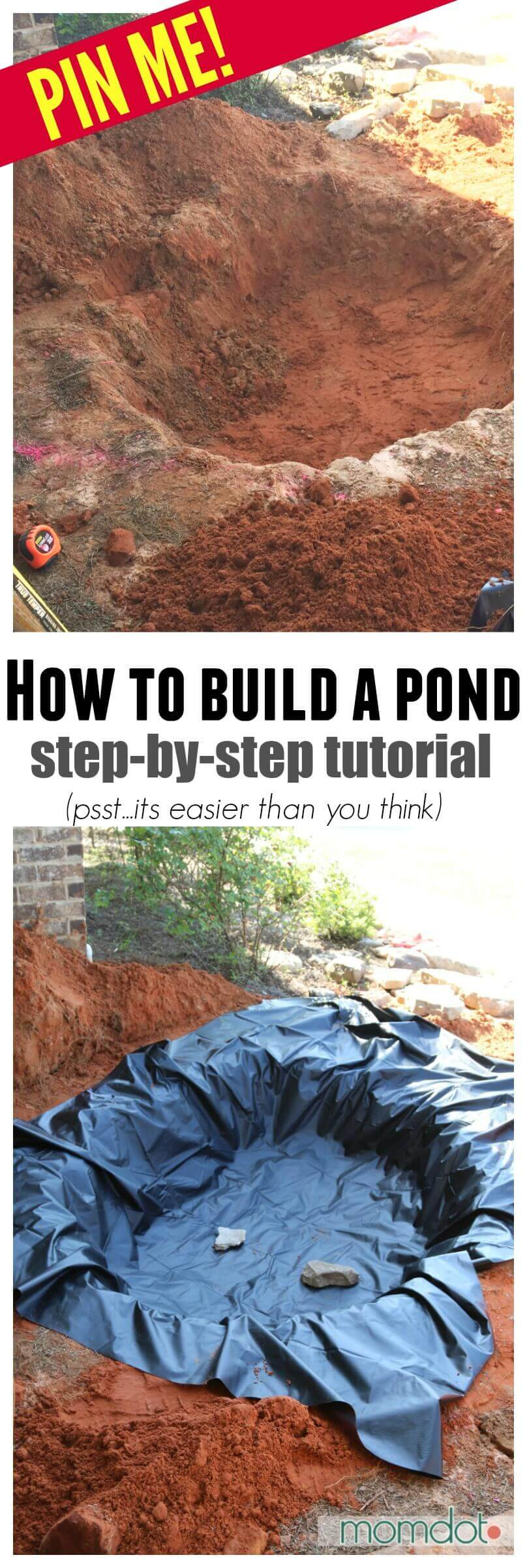 Easy DIY Backyard Pond Ideas