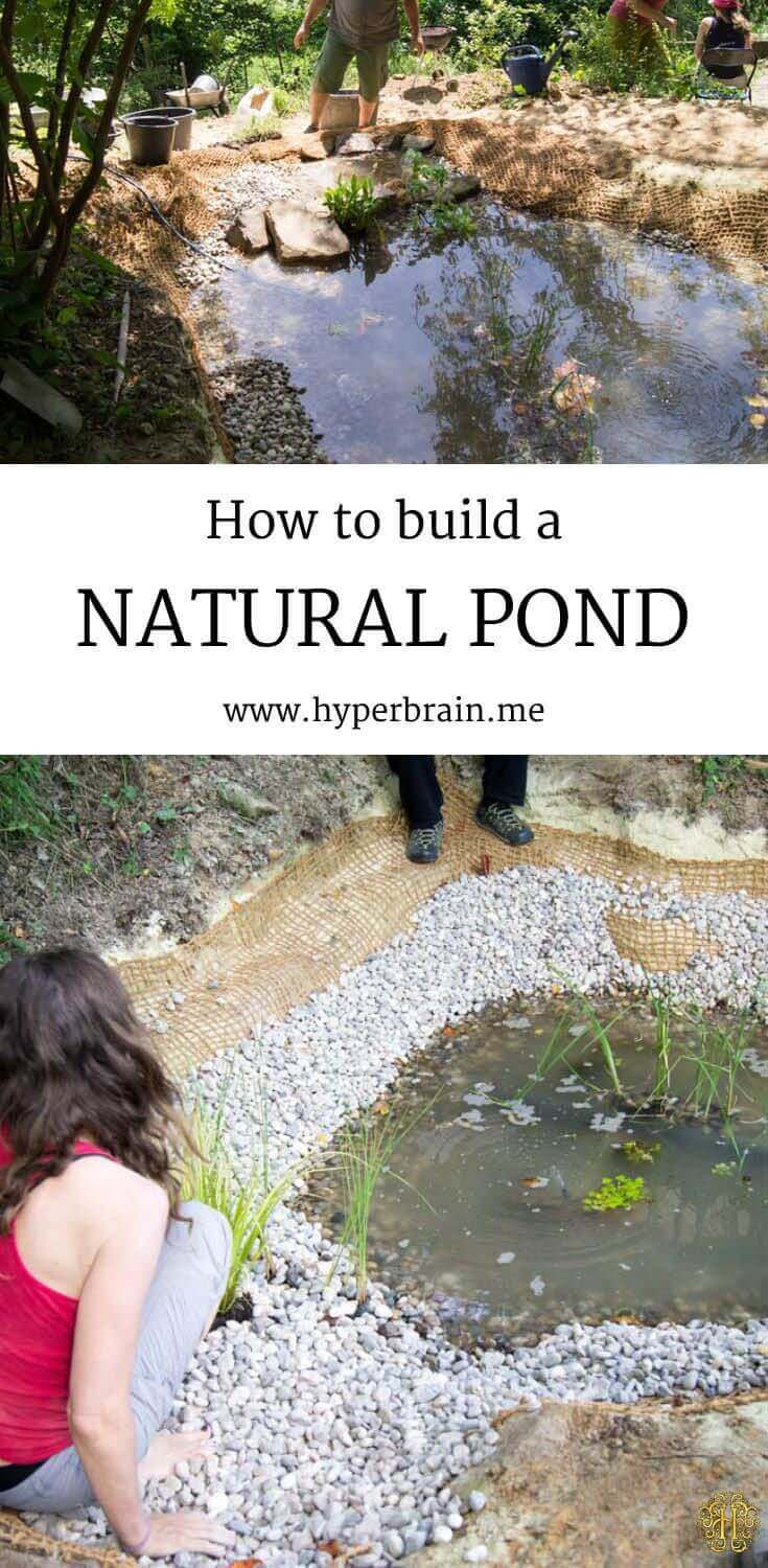 Ecological DIY Linerless Natural Pond
