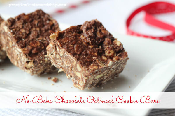 No Bake Chocolate Oatmeal Cookie Bars, Dairy-Free, Gluten-Free