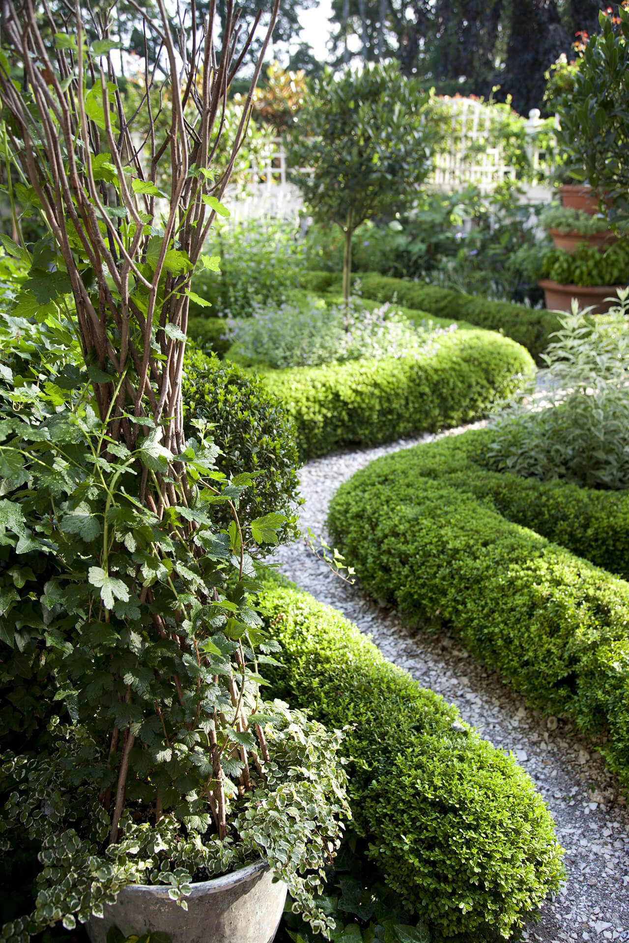 Or Try This Path