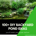 100+ DIY Backyard Pond Ideas
