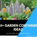 Garden Container Ideas