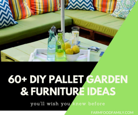 DIY Pallet Garden and Furniture Ideas