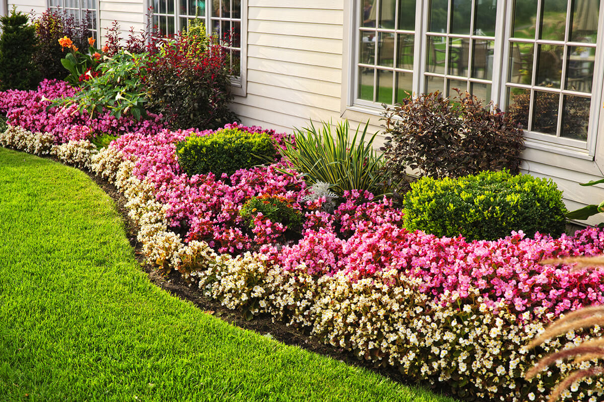 Flower Bed Ideas: Perennial Flower Bed for Summer-long Blooms