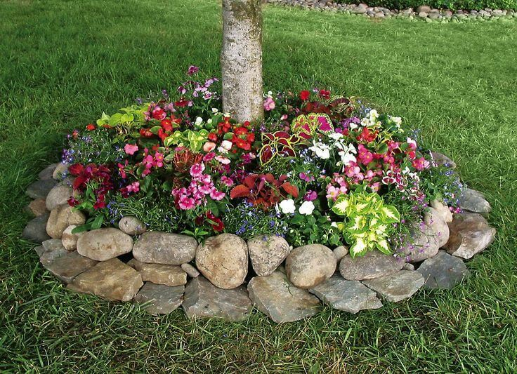 Flower Bed Ideas: Tree Base Flower Bed with Rocks