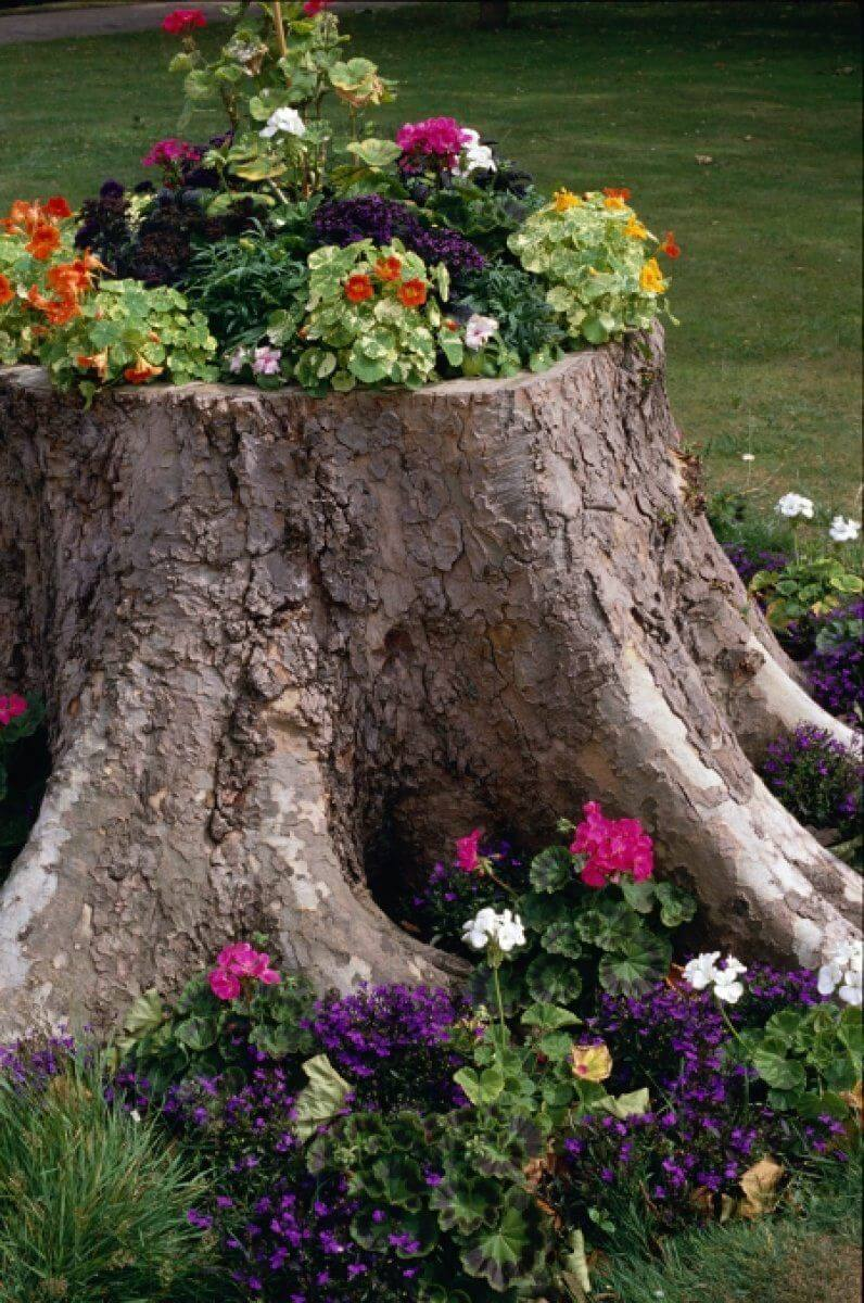 Flower Bed Ideas: Pretty Repurposed Tree Stump Flower Bed