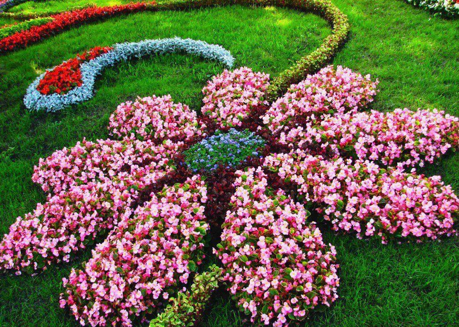 Flower Bed Ideas: Flower Shaped Floral Garden Layout
