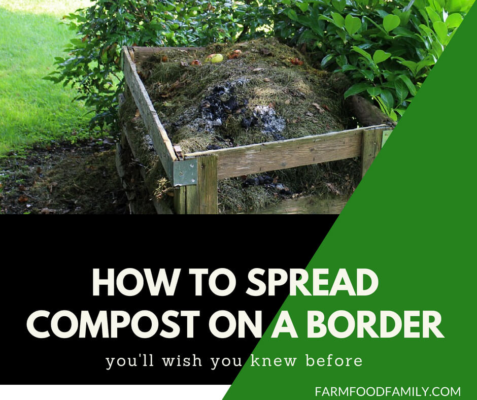 How to spread compost on a border
