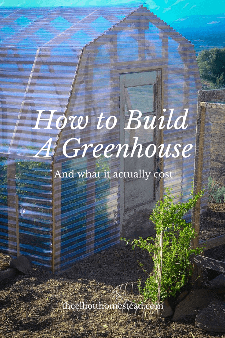 Large Shed-Shaped DIY Green House Ideas | Build a beautiful outdoor greenhouse | Creative Greenhouse DIY plans