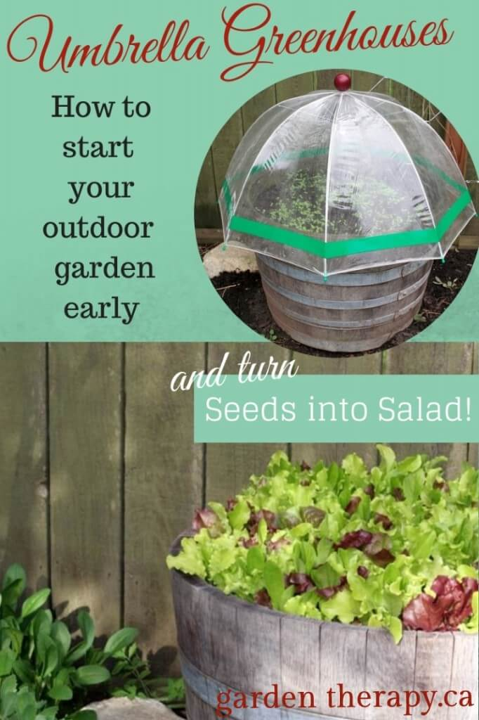 Small Green House Designed Using an Umbrella | Build a beautiful outdoor greenhouse | Creative Greenhouse DIY plans