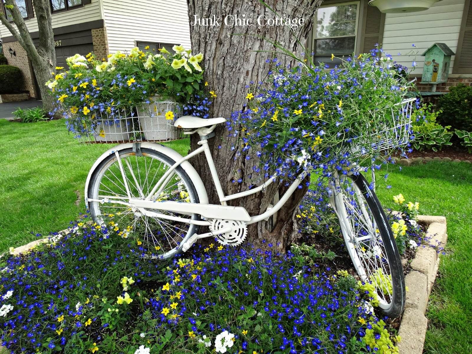 Bicycle Baskets Overflowing with Blossoms