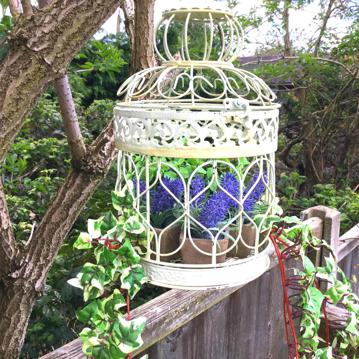 Hyacinths in a Birdcage with Vines