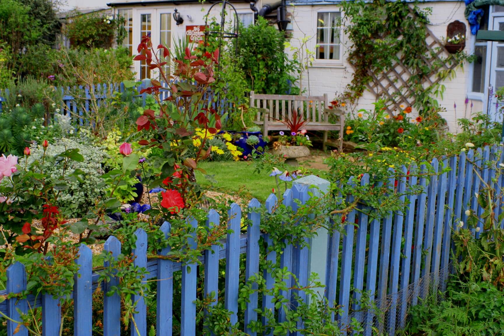 Bright Painted Fence with Rainbow Flowers