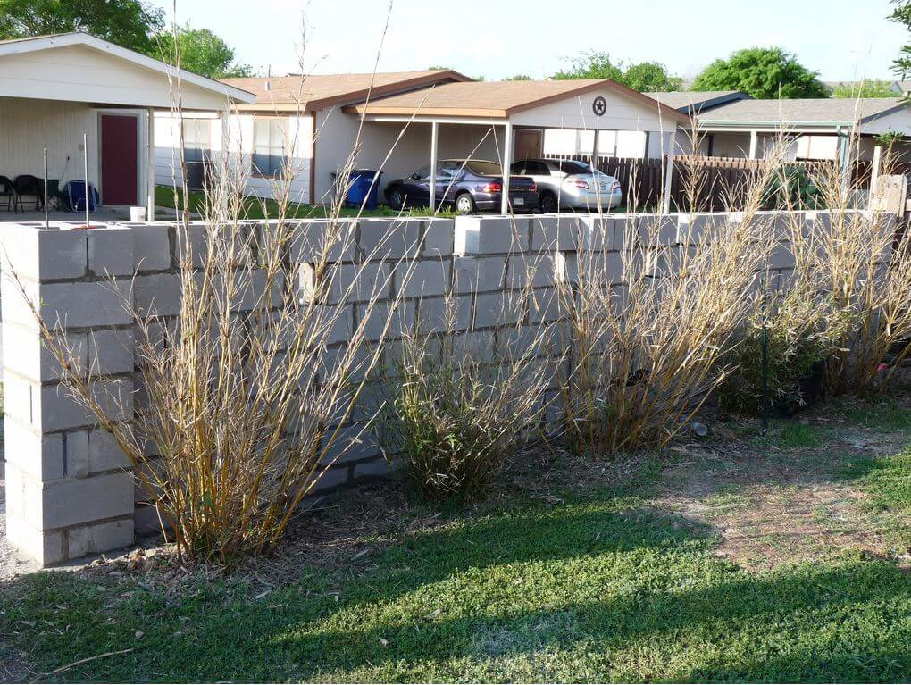 DIY Reinforced Concrete Block Wall | Six Mistakes to Avoid When Landscaping