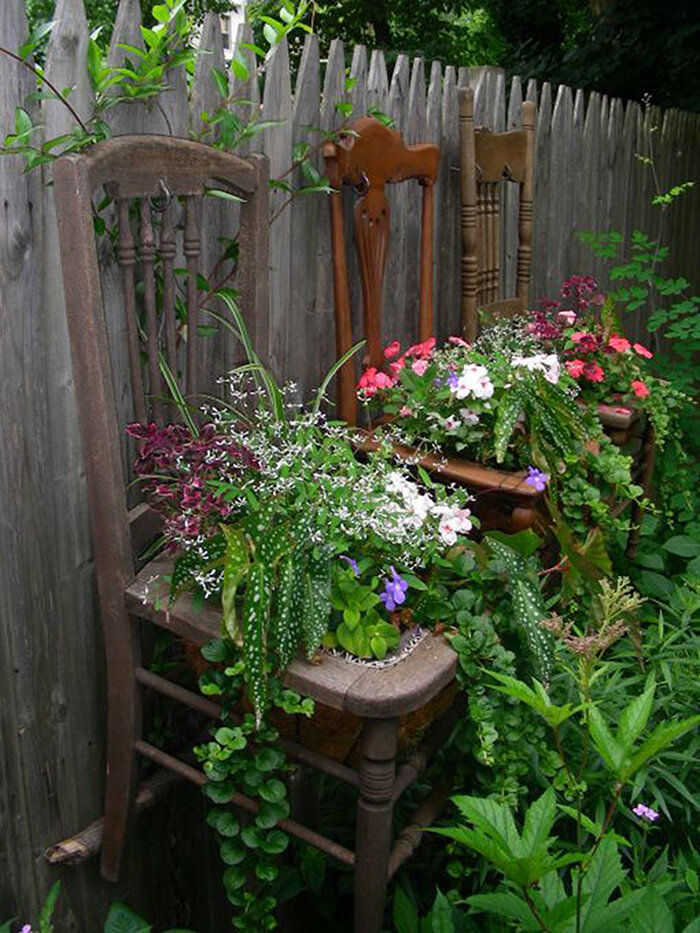 Antique Chairs with Lush Shade Plants