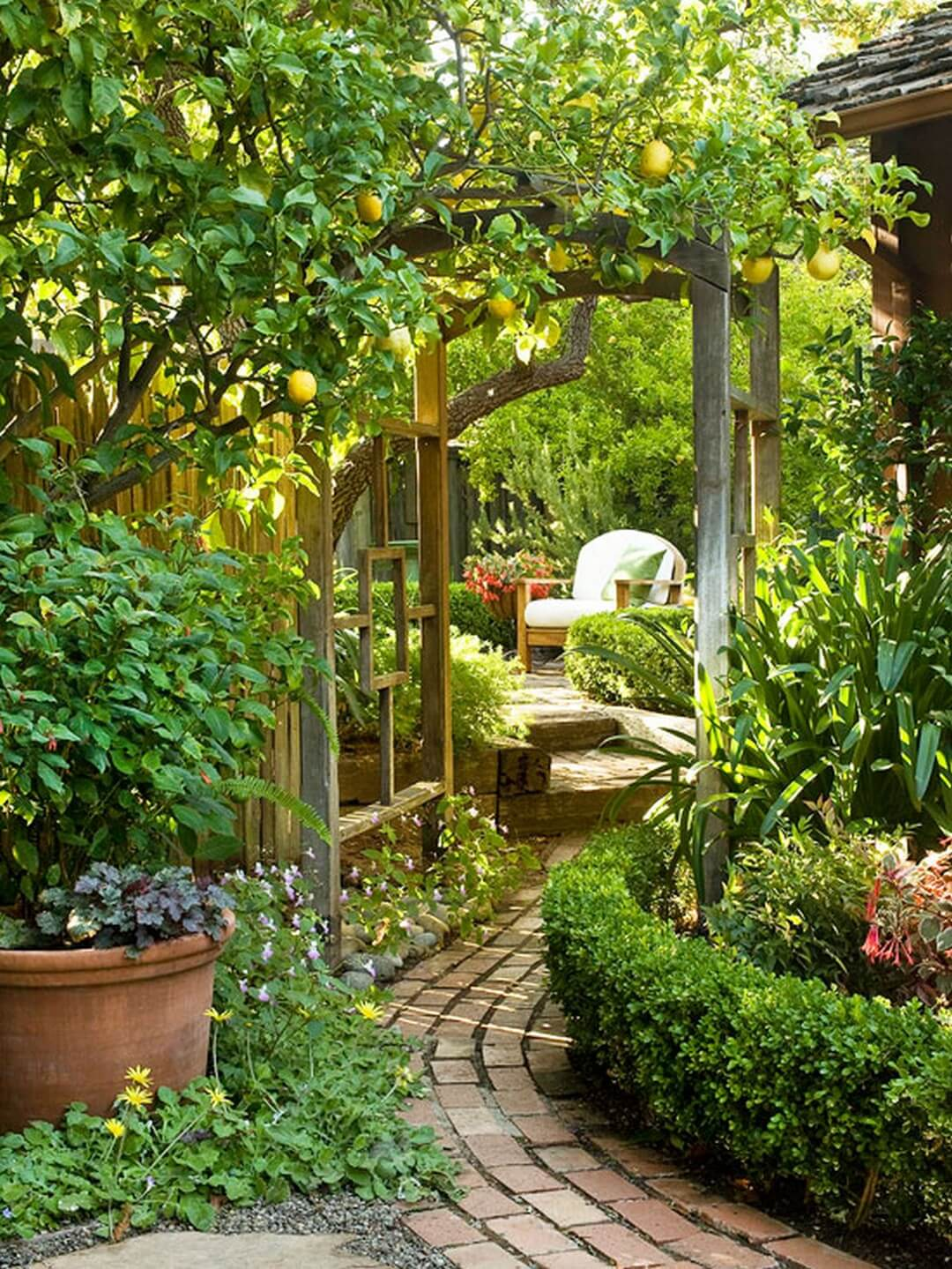 Curving Brick Path and Shady Seating