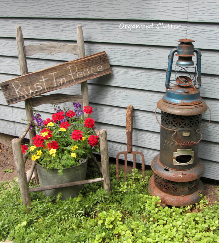 Aging Gracefully with Potted Geraniums