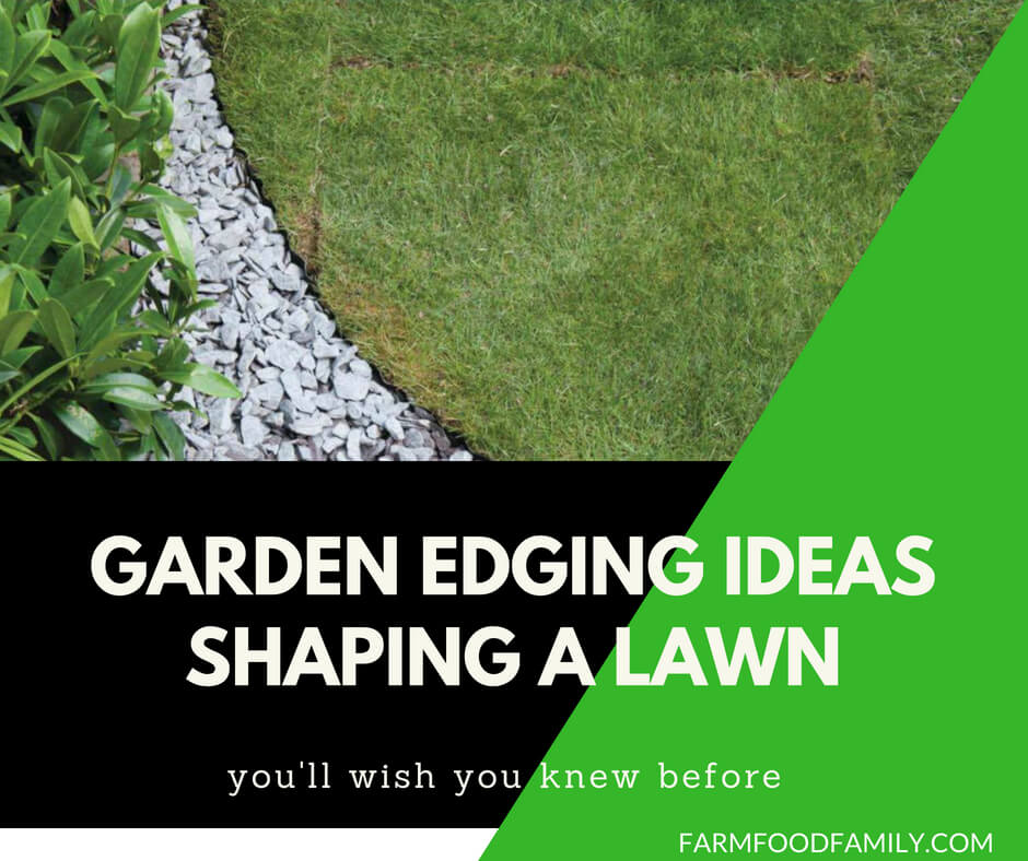Garden Edging Ideas: Shaping a lawn