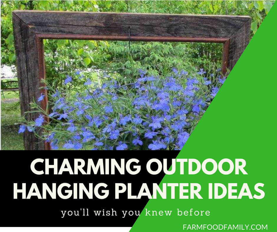 DIY Outdoor Hanging Planter Design Ideas | DIY Hanging Planter Box