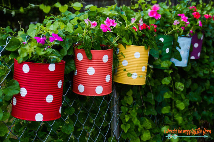 Tin Can Flower Garden | Low-Budget DIY Garden Pots and Containers