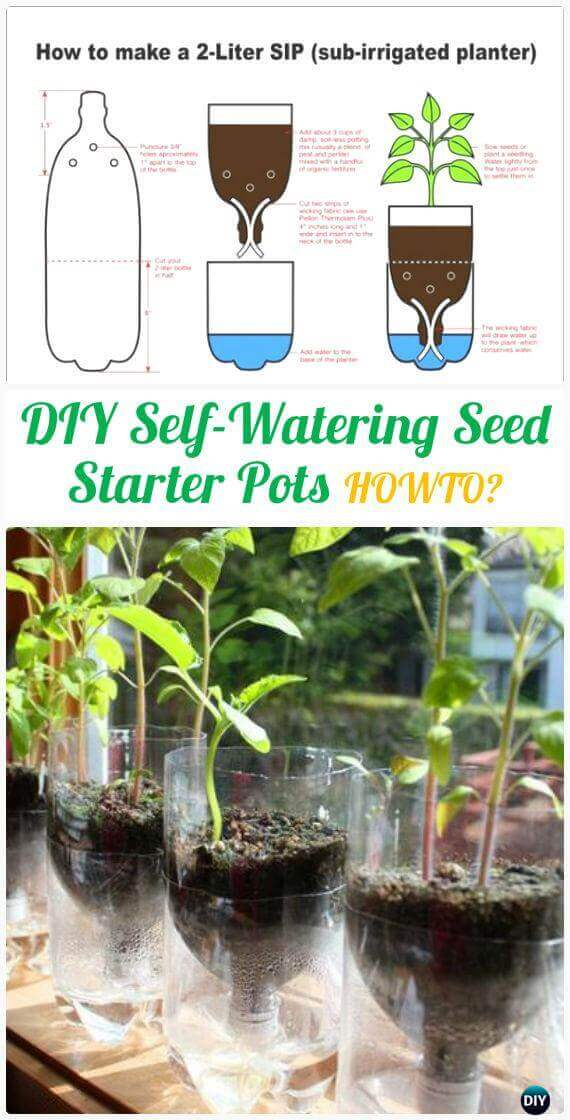DIY Self-Watering Seed Starter Pot Planter | Creative Plastic Bottle Vertical Garden Ideas - FarmFoodFamily.com