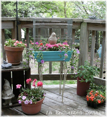 Birdcage Planter For Your Patio | Low-Budget DIY Garden Pots and Containers