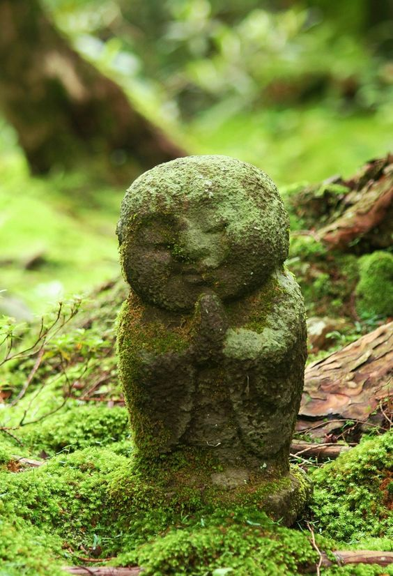Little Fellow | Zen Garden Designs & Ideas