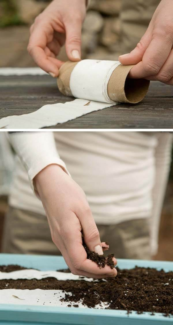 Make Toilet Paper Seed Tape