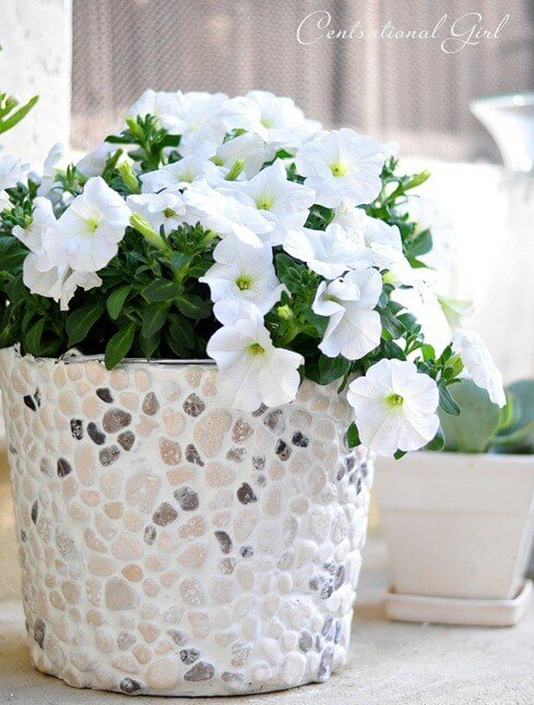 Rocky Bucket | Low-Budget DIY Garden Pots and Containers