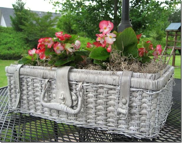 Garden Pot Made From An Old Picnic Basket | Low-Budget DIY Garden Pots and Containers