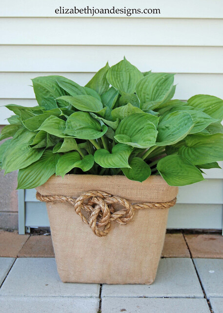 DIY Garden Pots From Broken Laundry Baskets | Low-Budget DIY Garden Pots and Containers