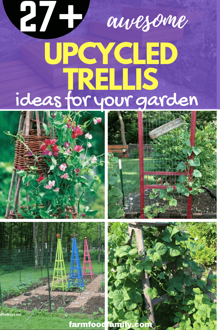 27 Awesome Cheap Up-cycled Trellis Ideas For Garden