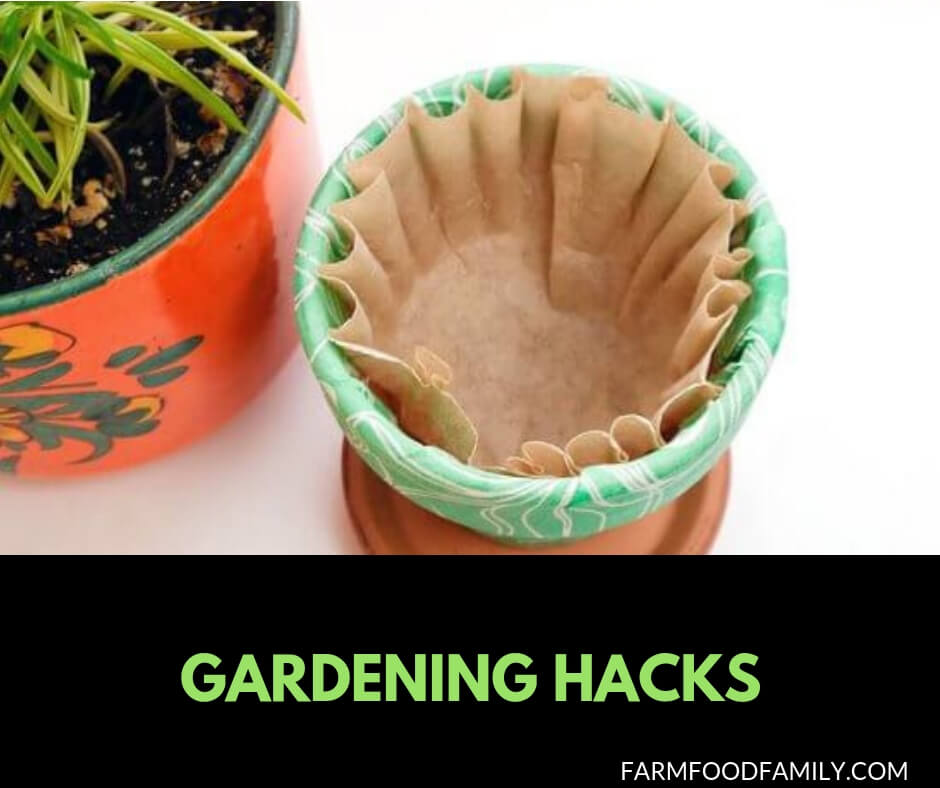 27+ Clever Gardening Hacks that you never thought of