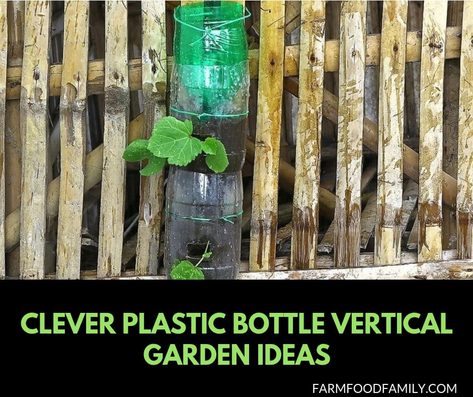 Clever plastic bottle vertical garden ideas