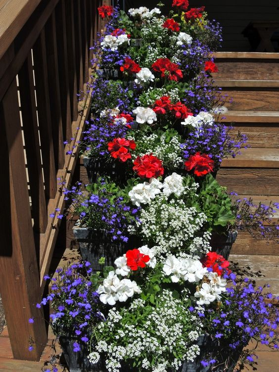 Peppy Planters | Flower Garden Ideas for Containers and Windowboxes
