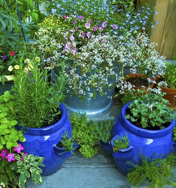 Herb garden in pots | Flower Garden Ideas for Containers and Windowboxes