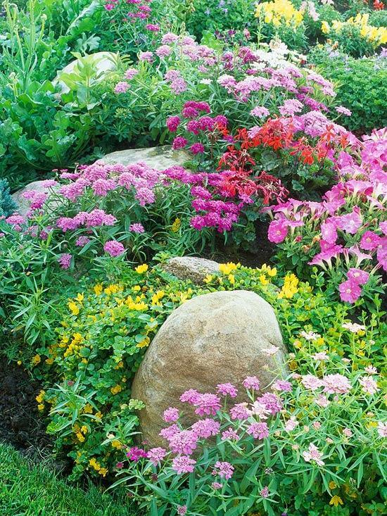 No-work cottage garden | Low-maintenance flowers and plants