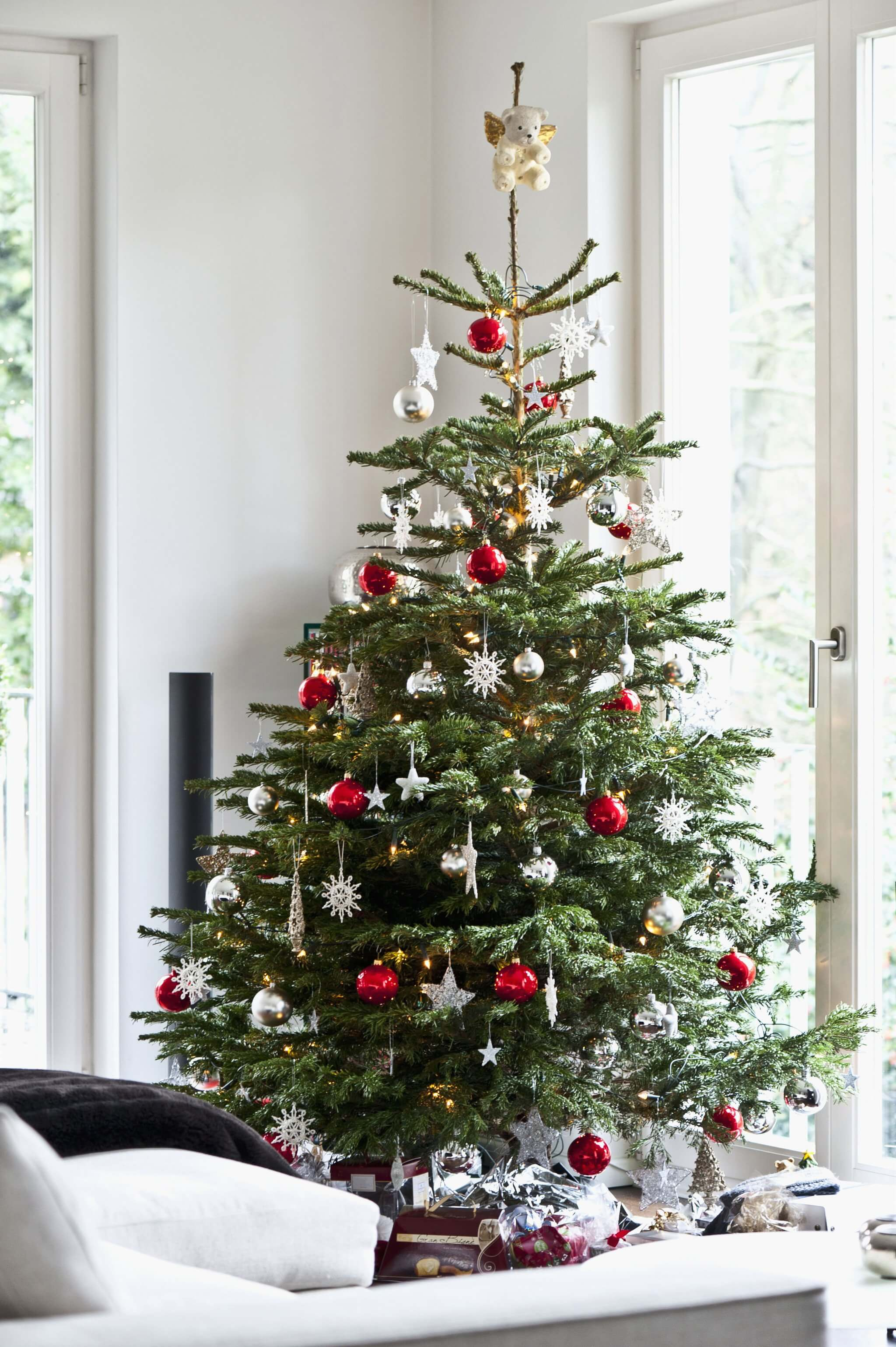 Decorating Your Holiday Tree Like a Pro | Best Way to Decorate Christmas Trees on a Budget: Inexpensive or Free & Easy Holiday Ornaments & Decorations