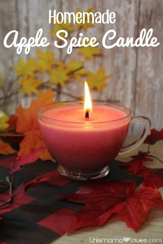 Homemade Apple Spice Candle | DIY Fall Candle Decoration Ideas - Farmfoodfamily.com