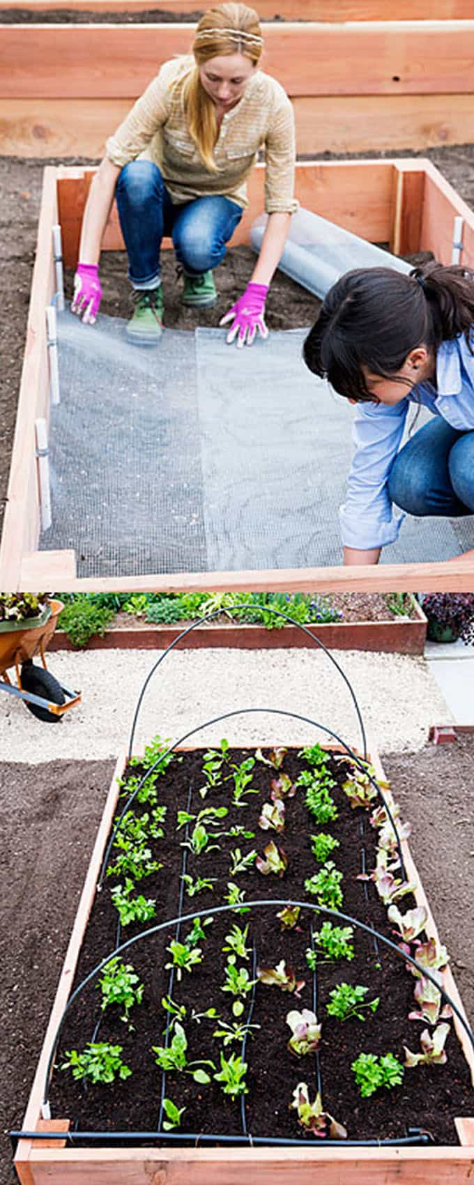 Raised Beds with PVC pipes | How to Build a Raised Vegetable Garden Bed | 39+ Simple & Cheap Raised Vegetable Garden Bed Ideas - farmfoodfamily.com